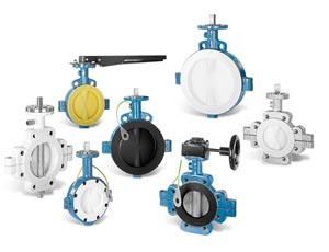 Butterfly Valve Manufacturers & Exporters