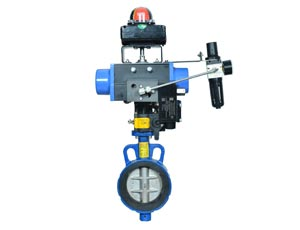 Butterfly Valves Manufacturers & Exporter