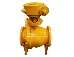 Globe-Valves-Manufacturers-&-Exporters