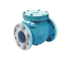 Safety Valve Manufacturers & Exporter